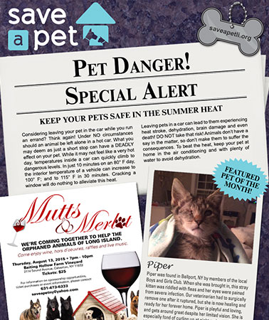 Save-A-Pet: E-Newsletter