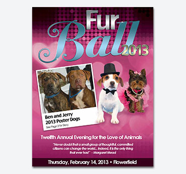 Save-a-Pet Furball Gala: Flier