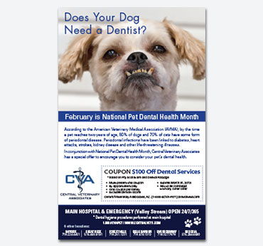 Central Vets Ad