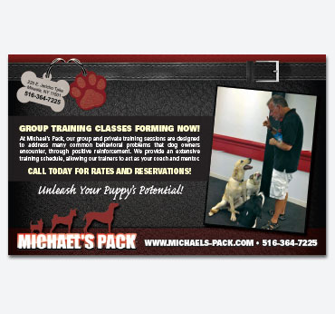 Michaels Pack Ad