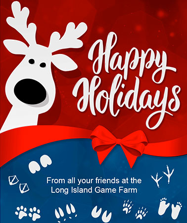 Long Island Game Farm: Holidays Email