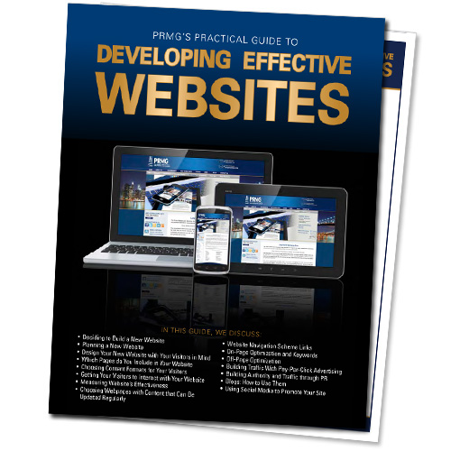 Free Download: Practical Guide to Developing Effective Websites